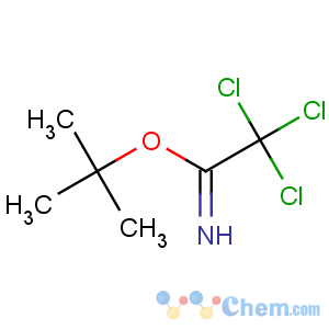 CAS No:98946-18-0 tert-butyl 2,2,2-trichloroethanimidate